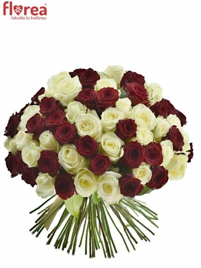 Kytice 100 míchaných růží THINA