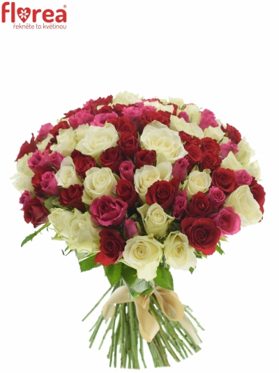 Kytice 100 míchaných růží WHITE GRACIANA 35cm