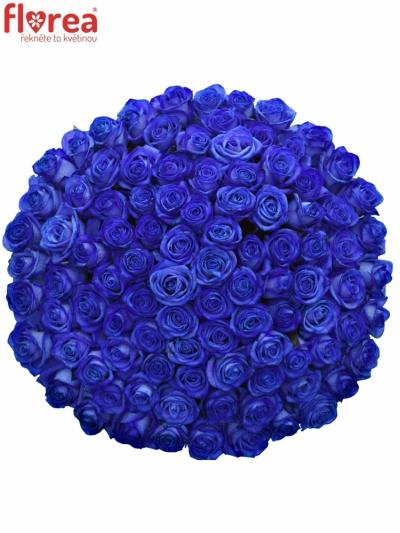 Kytice 100 modrých růží BLUE VENDELA 80cm