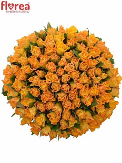 Kytice 100 oranžových růží MARIE-CLAIRE! 60cm