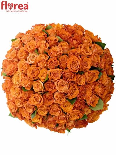 Kytice 100 oranžových růží Mpesa 40cm