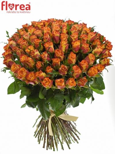 Kytice 100 oranžových růží SOMBRERO 40cm