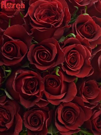 Kytice 100 rudých růží BURGUNDY