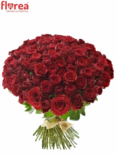 Kytice 100 rudých růží UPPER CLASS (S)