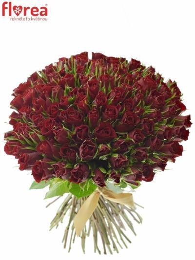 Kytice 100 rudých růží VALENTINO