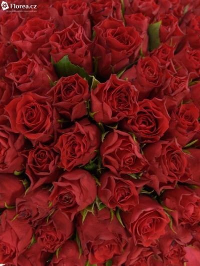 Kytice 100 růží HOT BLOOD