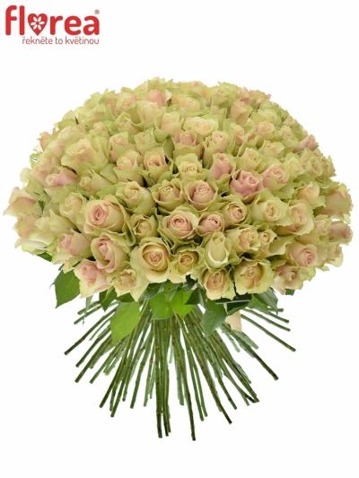 Kytice 100 růží LA BELLE