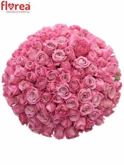 Kytice 100 růžových růží ALL 4 LOVE+
