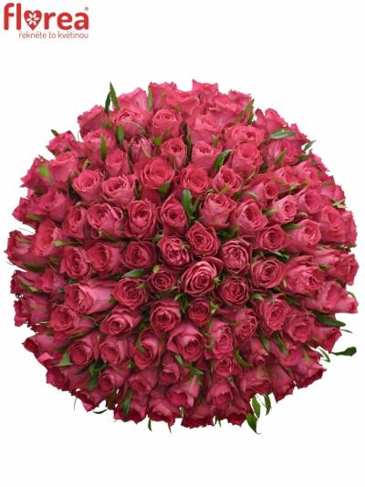 Kytice 100 růžových růží CANDIDATE!