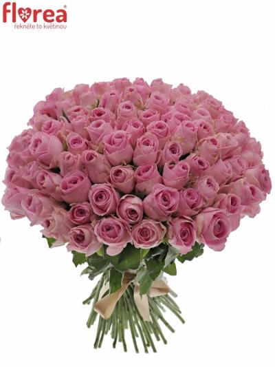 Kytice 100 růžových růží HEIDI!