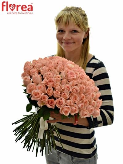 Kytice 100 růžových růží PINK PANASH 50cm