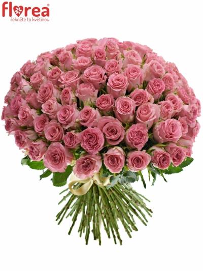 Kytice 100 růžových růží SEDUCTIVE@ 50 cm