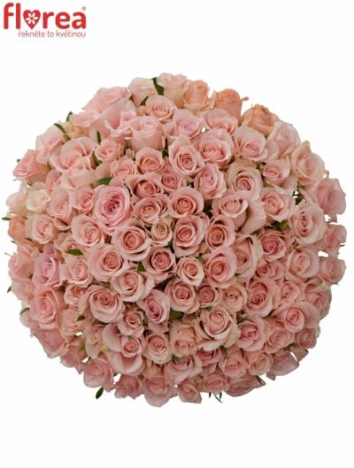 Kytice 100 růžových růží YVONNE 50 cm