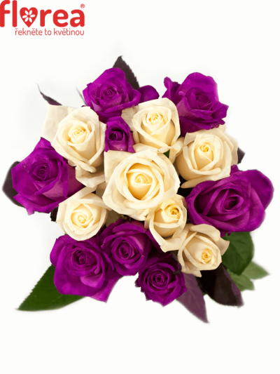 Kytice 15 barvených růží ATLANTA