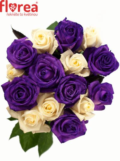 Kytice 15 barvených růží AUGUSTINA 60cm