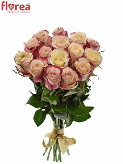 Kytice 15 bílorůžových růží ADVANCE SWEETNESS 40cm