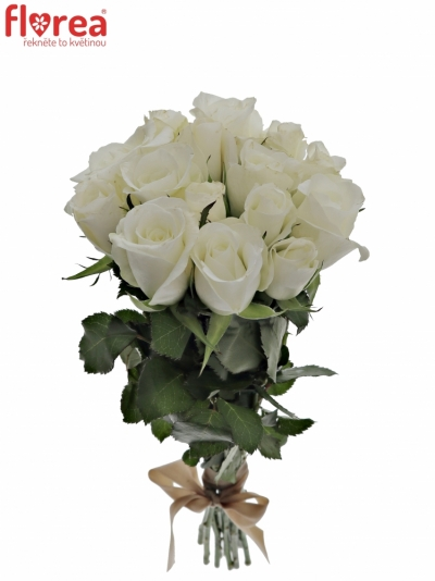 Kytice 15 bílých růží AKITO