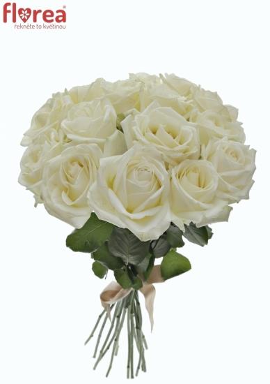 Kytice 15 bílých růží ALBATROS