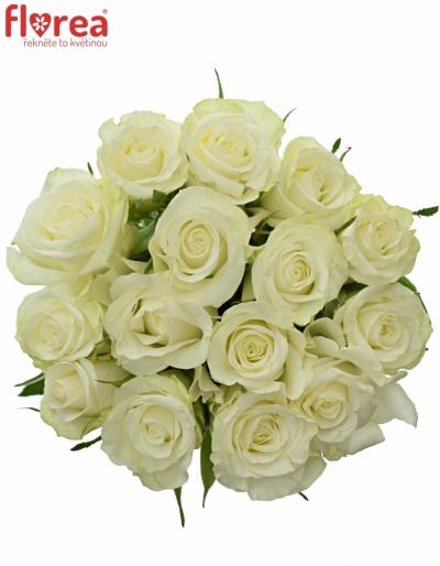 Kytice 15 bílých růží ASPEN 60cm