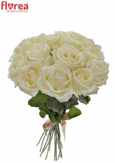 Kytice 15 bílých růží AVALANCHE  40cm