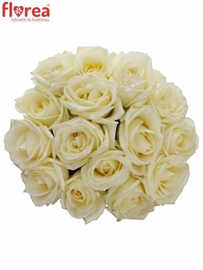 Kytice 15 bílých růží AVALANCHE+ 50cm