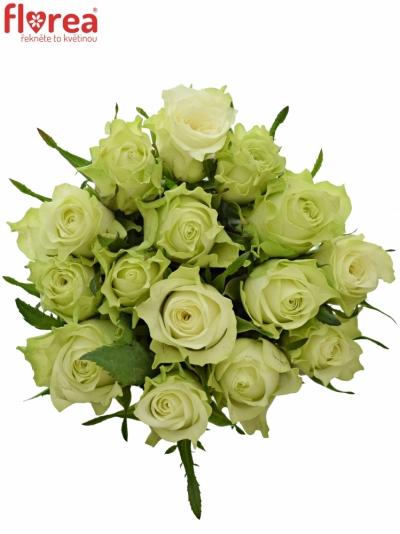 Kytice 15 bílých růží MURU 40 cm