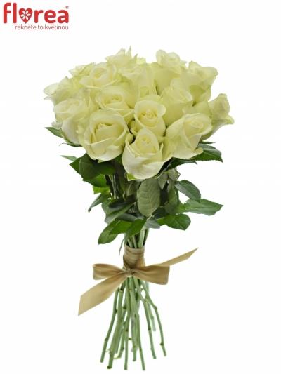 Kytice 15 bílých růží SNOWSTORM 50cm