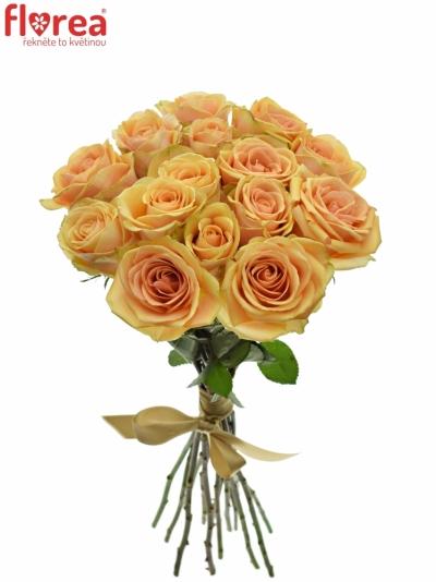 Kytice 15 čajových růží ALCHEMY
