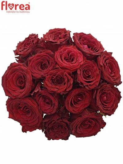 Kytice 15 červených růží ABBA