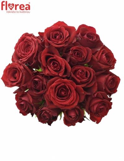 Kytice 15 červených růží FURIOSA 50cm