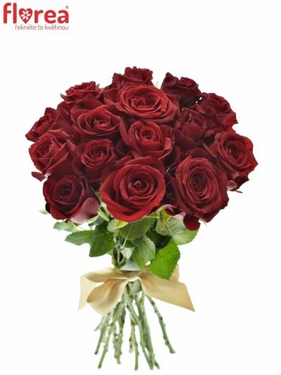 Kytice 15 červených růží FURIOSA 35cm