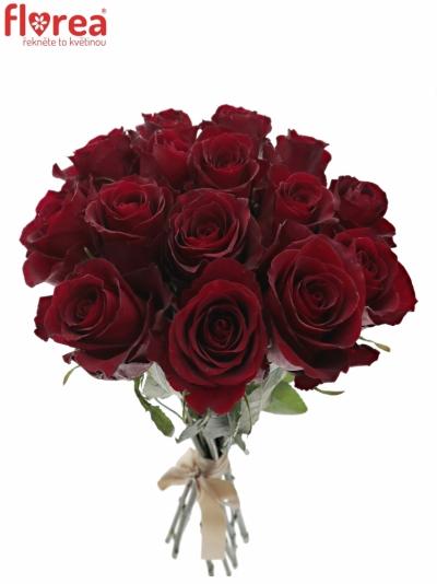 Kytice 15 červených růží NAZCA 35cm