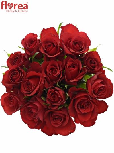 Kytice 15 červených růží RED CALYPSO 40cm