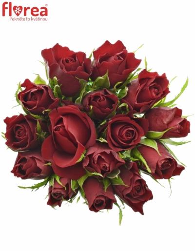 Kytice 15 červených růží VALENTINO 40cm