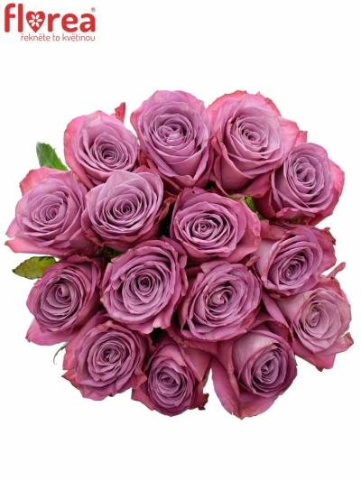 Kytice 15 fialových růží MOODY BLUES 70cm