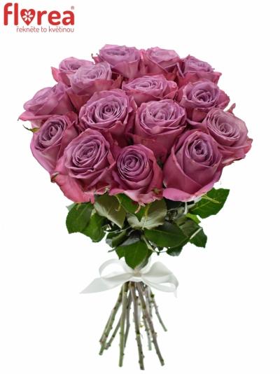 Kytice 15 fialových růží MOODY BLUES 80cm