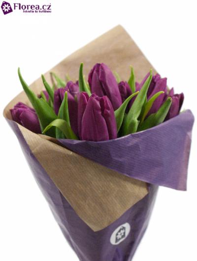 Kytice 15 fialových tulipánů PURPLE PRINCE 35cm-papír