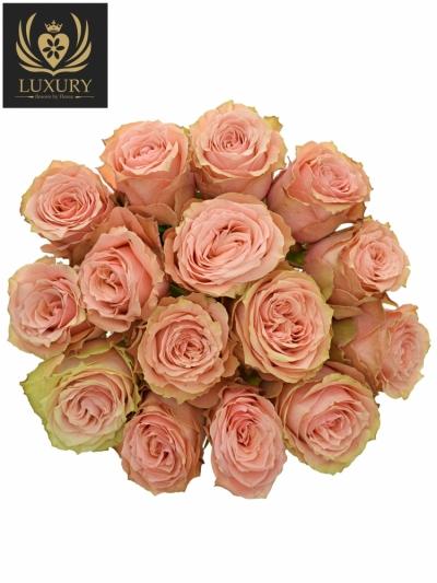 Kytice 15 luxusních růží KAWA+