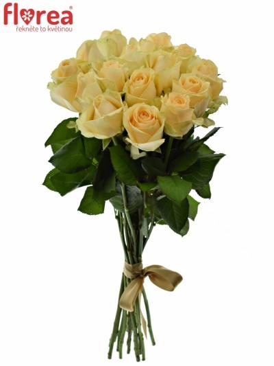 Kytice 15 meruňkových růží MAGIC AVALANCHE 40cm