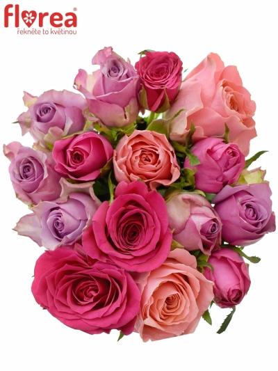 Kytice 15 míchaných růží ABERA 40cm