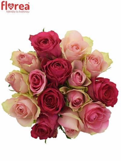 Kytice 15 míchaných růží ALHIVIA 40cm