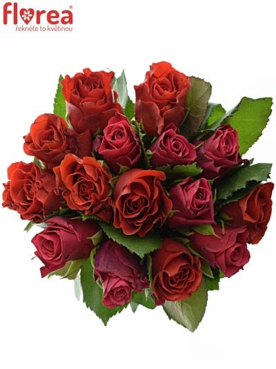 Kytice 15 míchaných růží DERRIE 40cm