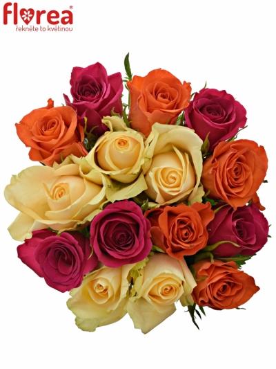 Kytice 15 míchaných růží KIMI CANDRA 35cm