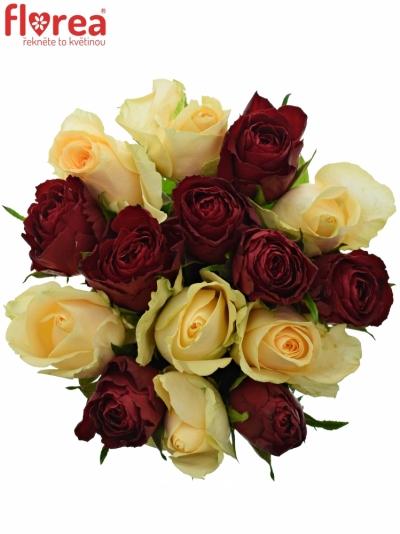 Kytice 15 míchaných růží PEACH MELORA 50cm