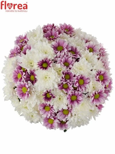 Kytice 15 míchaných chryzantém ADONA