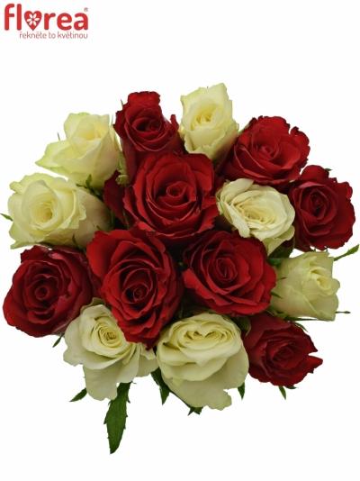 Kytice 15 míchaných růží AGATHA 40cm