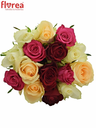 Kytice 15 míchaných růží AMALGITH