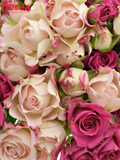 Kytice 15 míchaných růží ARWEL 40cm