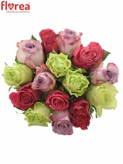 Kytice 15 míchaných růží FRANCESCA 35cm