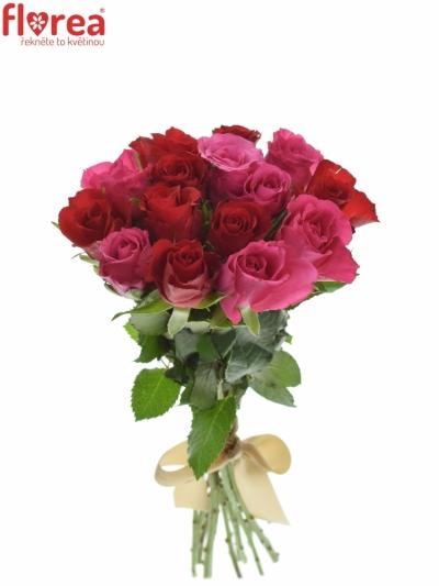 Kytice 15 míchaných růží GRACIANA 35cm